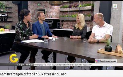 TV2 – intervju